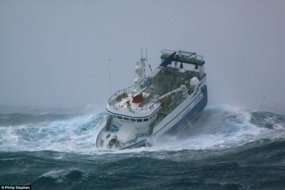 Bajar torrent el dique las películas sobre la pesca
